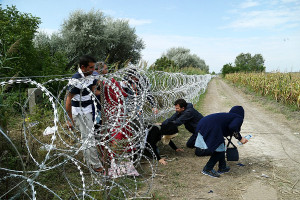 Refugees cross into Hungary underneath the Hungary–Serbia border fence, 25 August 2015