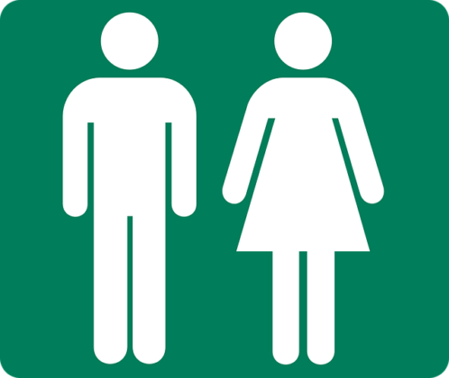 e13db50f2cf71c3e81584d04ee44408be273e5d518b8134191f8_640_transgender