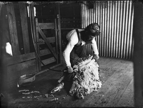 Australian farmer photo