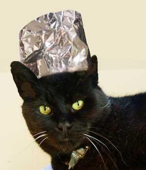 Tin foil hat photo